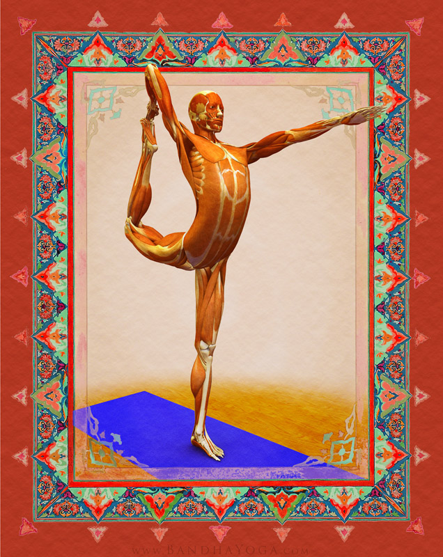 <strong>Dancer's Pose</strong> - This image is from 'Anatomy for Vinyasa Flow and Standing Poses' in the 'Yoga Mat Companion' Series