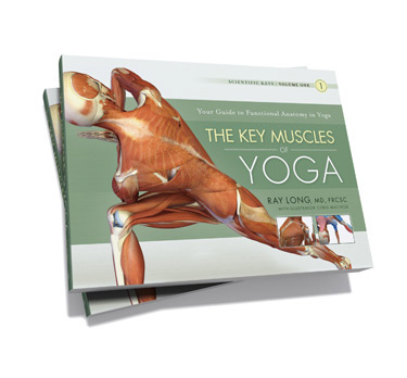 Look inside! Scientific Keys Volume 1 - The Key Muscles of Yoga